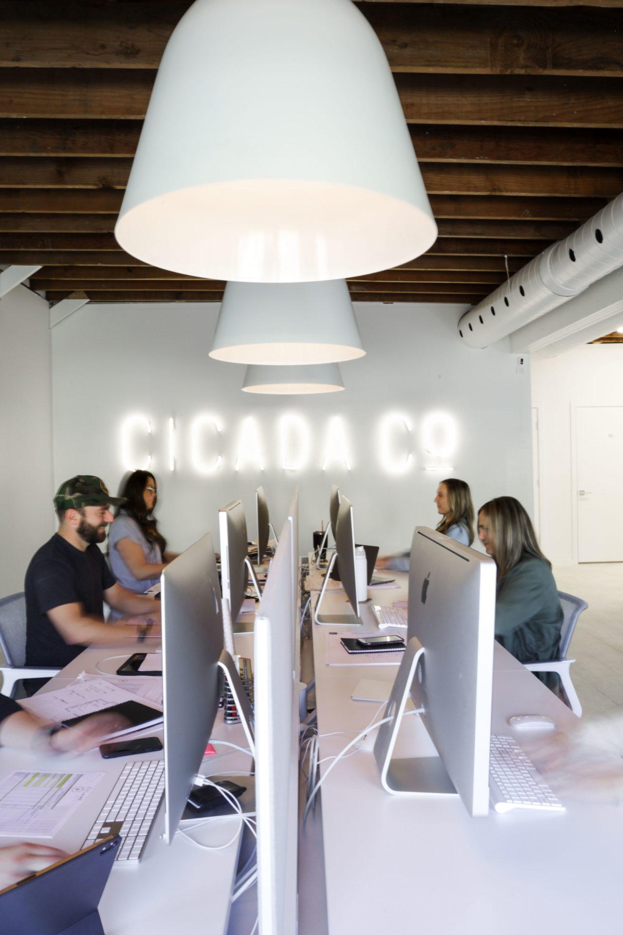 Cicada Company
